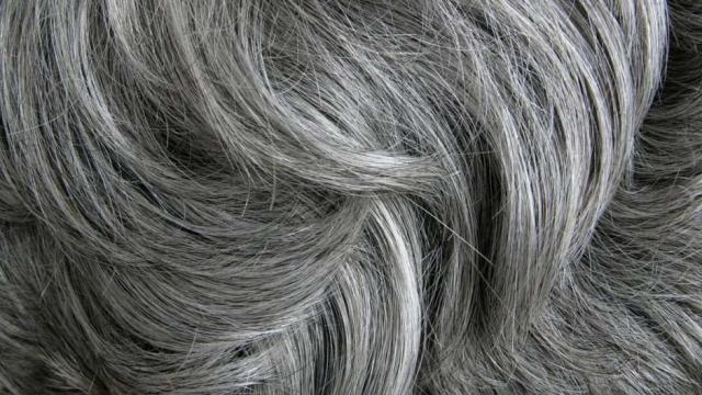 ¿Por qué el cabello se pone gris?