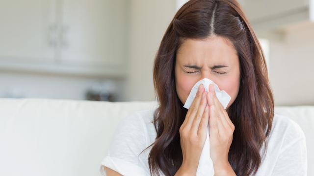 Las alergias están aumentando, para los médicos es alarma