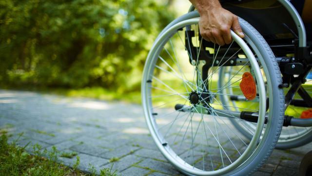 La esclerosis múltiple, después de seis años de investigación