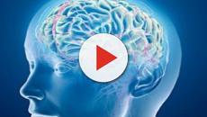 Pronto Soccorso: tante le richieste d'intervento per disturbi mentali