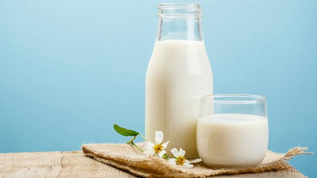 ¿Es saludable consumir leche entera?