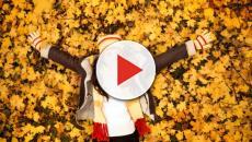 Como prevenir las enfermedades del otoño