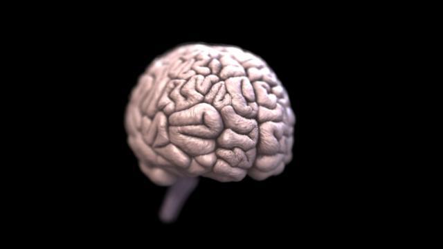Los teléfonos celulares causan cáncer cerebral?