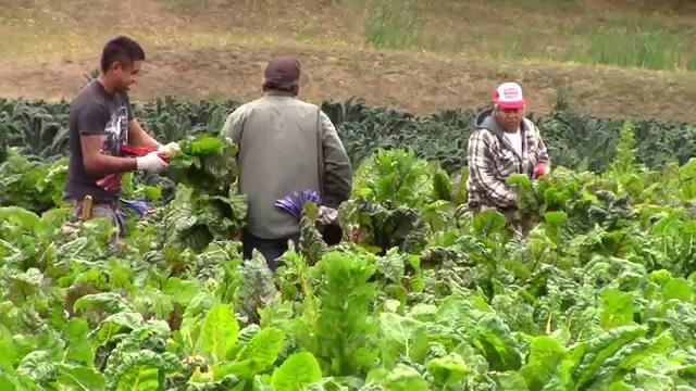 La agricultura y la energía son ahora fronteras de alta tecnología