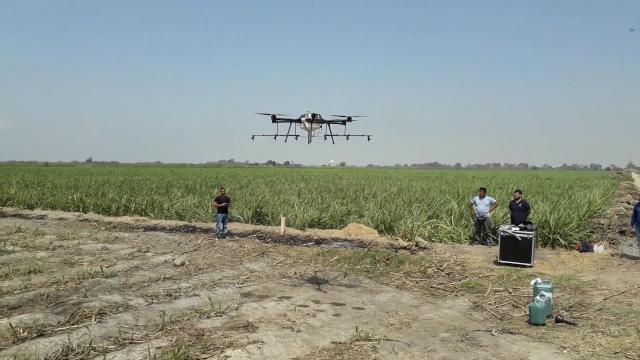 Para el campo: el software analiza datos de drones sin Internet