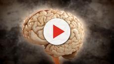 Sin dormir, el cerebro es consciente de sí mismo: es por eso que