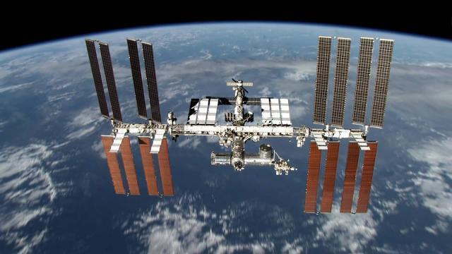 Estación espacial internacional: una bacteria desconocida ha sido identificada