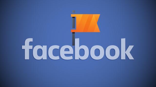 Facebook, nuevo productor de contenido