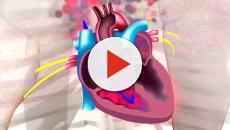 Problemas con las válvulas del corazón, estos son los síntomas a tomar en cuenta