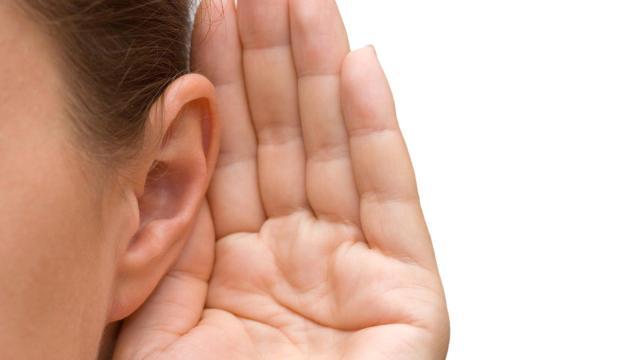 La grasa visceral promueve la pérdida de audición con la edad