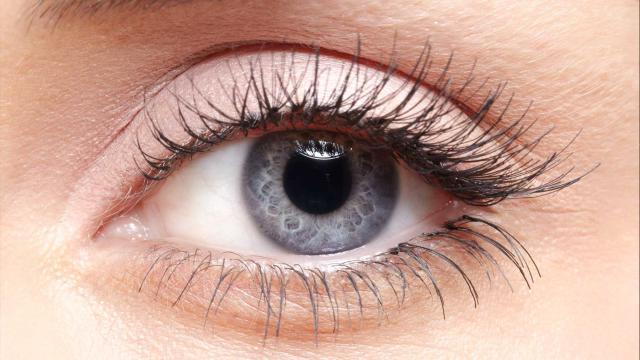 Glaucoma: síntomas, tratamiento y prevención
