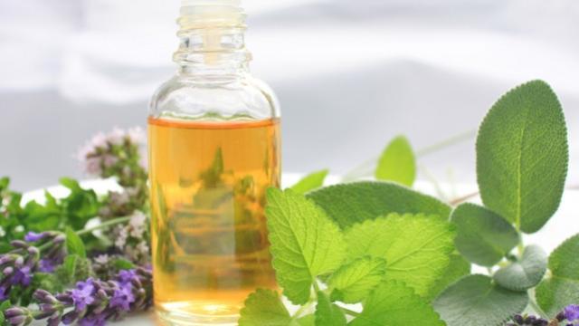 5 increíbles beneficios del aceite de orégano