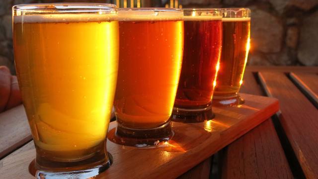 La cerveza como un analgésico, ¿mejor que el paracetamol?