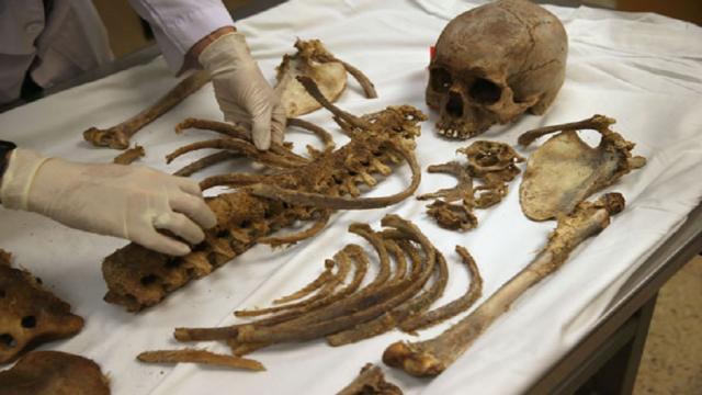 Exposición muestra cadáveres preservados encuentra su lugar en Heidelberg