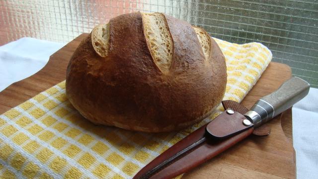 Recetas de pan casero con levadura de cerveza
