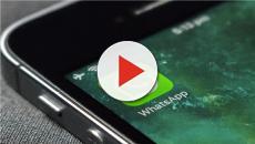 WhatsApp, sono arrivate le videochiamate di gruppo