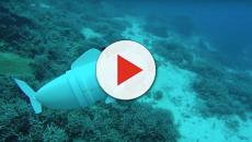 Nuevo robot usa materiales receptivos para nadar a través del agua