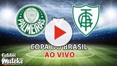 Palmeiras x América-MG: transmissão da partida ao vivo na TV e online