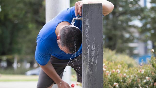 Cómo protegerse del golpe de calor
