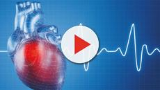 Corazón artificial en ritmos de silicona durante 45 minutos