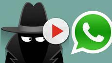 Un bug di WhatsApp fa ricevere messaggi dagli utenti bloccati