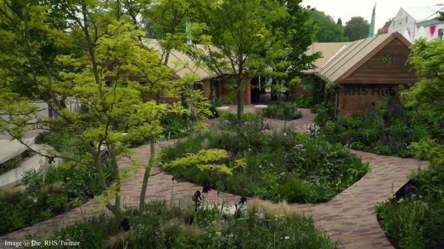 'Feel Good Garden' at RHS Chelsea Flower Show demonstrates wellbeing benefits