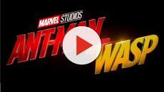 Por qué Avengers Infinity War no trajo a Ant-Man en la escena post-créditos