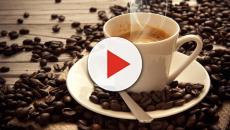 ¿Sabias que la entropía cerebral es causada por el café?