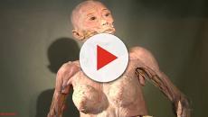 Veja 10 fatos curiosos sobre o corpo humano