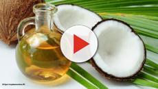 Os benefícios do açúcar de coco