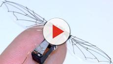RoboFly: creato il primo insetto robotico che vola grazie ad un laser