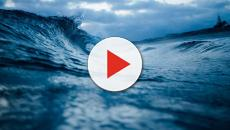 VIDEO: Conoce los beneficios del agua de mar