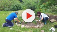 Disminuye los síntomas de la artritis con ayuda de la jardinería