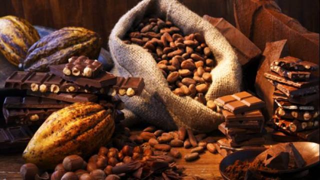 Sorprendentes beneficios del cacao para la salud