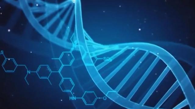 Estudio exhaustivo de genes revela nuevas facetas de la evolución