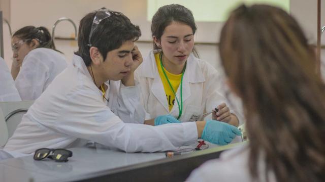 Los estudiantes de STEM necesitan una mejor educacion en la escuela de postgrado