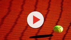 Tennis, Cecchinato compie l'impresa e approda in semifinale all'Open di Francia