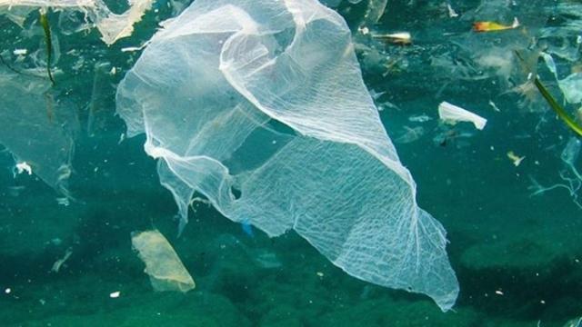 5 giugno – Giornata Mondiale dell'Ambiente: lotta alla plastica
