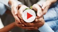 VIDEO: Consejos para llevar una vida familiar saludable