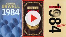 VÍDEO: La novela