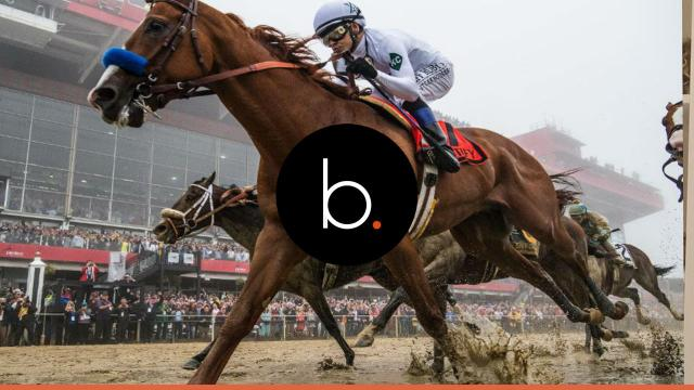 Belmont Stakes Odds 2018: additional information