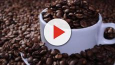 Deputados gastam o equivalente a 48 toneladas de café com aluguel de máquinas
