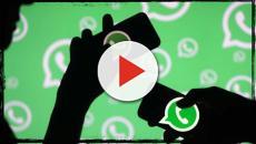 WhatsApp: nel 2020 cesserà di funzionare su alcuni smartphone