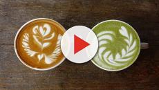 VIDEO: Polvo de brócoli un innovador superalimento que previene el cáncer