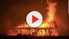 Wildfires in northern California destroy thousands of acres of land