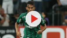 Gustavo Scarpa pode voltar a jogar pelo Palmeiras hoje