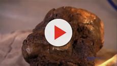 La niña australopítecus de 3.3 millones de años que trepaba árboles