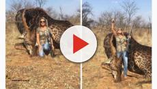 Caçadora norte-americana provoca revolta com foto de caça nas redes sociais