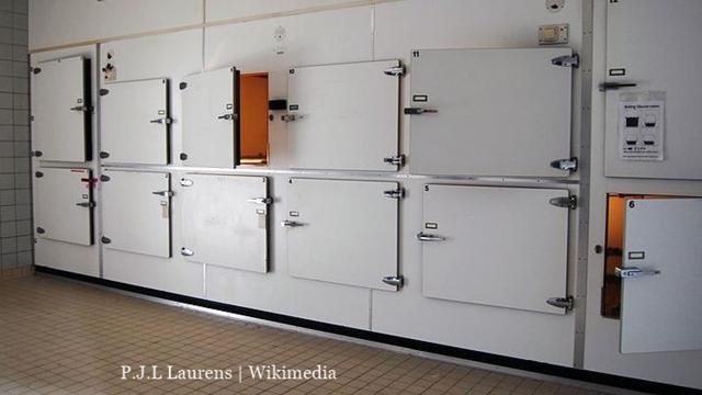 South African woman declared dead but was later found alive in a morgue fridge