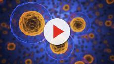 HIV: inizierà la sperimentazione del vaccino su 2300 persone